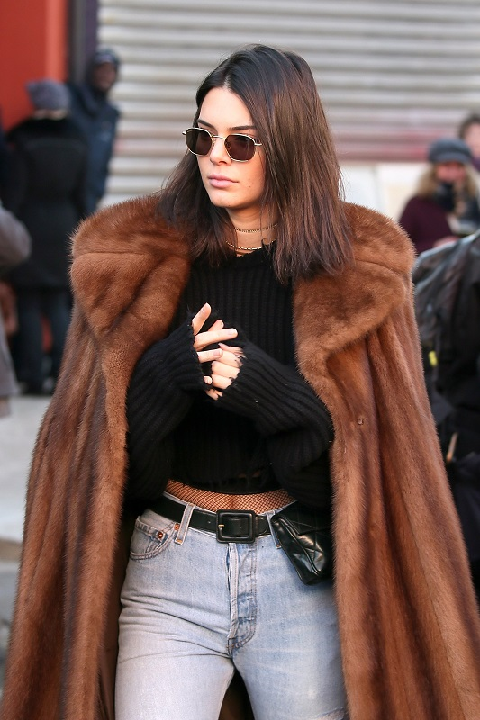 kendall jenner in fur coat