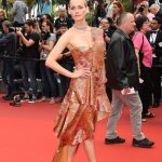 alfombra roja del festival de Cannes 2017 red carpet